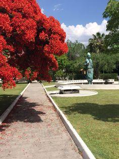 Plazuela Vallarta, monumento  en honor a la colonia libanés