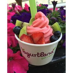 Frozen Yoghurt, Acai Bowl, Breakfast, Food, Acai Berry Bowl, Morning Coffee, Meal, Essen, Hoods