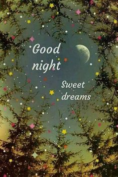 Good night and sweet dreams, Sweetie. Good Night Thoughts, Good Night I Love You, Beautiful Good Night Images, Good Night Prayer, Good Night Blessings, Good Night Gif, Good Night Quotes Images, Good Night Messages, Good Night Greetings