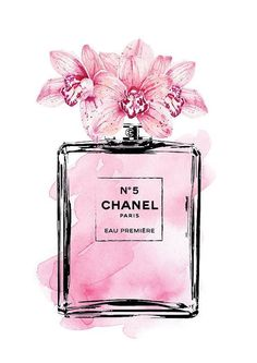 chanel perfume bottle drawing illustrations more. Black Bedroom Furniture Sets. Home Design Ideas