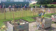 Arcueil Ville Comestible - Jardin Partagé Roure - https://www.facebook.com/arcueilvillecomestible/