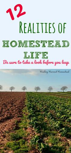 """Do you have a dream to start your own homestead? Online it's easy to only see the """"good"""" stuff. Homesteading is not all fun, it's not glamorous, and there's a lot to know. Here are 12 important realities you need to know about the homestead life. Just keeping homesteading real, here."""