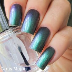 Canis Majoris is so gorgeous! A Green to Violet shift is just not enough there are hints of Blue, Red and Gold in here as well. It's a must have!Canis Majoris is a massive star with stunning color and light. This polish is Hand Blended to Order, always 5 free and always vegan.This is a 3 coat polish, no undies required.Image Credit:IG @4boys1momlacquer