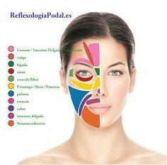 Mapa simple de Reflexologia Facial