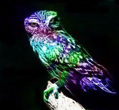 Fractalius Owl by minimoo64.deviantart.com on @deviantART