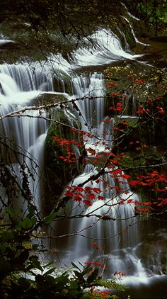 Amazing Photos of Most Beautiful Waterfalls in The World #photography #photo