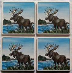 Barlow ArtStone Coasters Absorbent Designs Moose NEW