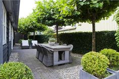 Pergola Against House Back Gardens, Small Gardens, Outdoor Gardens, Garden Furniture, Outdoor Furniture Sets, Outdoor Rooms, Outdoor Decor, Outdoor Dining, Dining Area