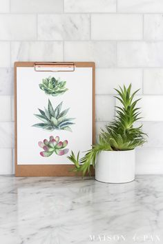 Free Printable Succulent Wall Art