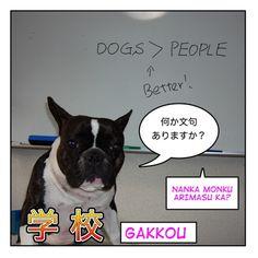 学校 (gakkou) : School related Japanese | Maggie Sensei