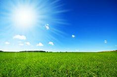 Solar Tinting