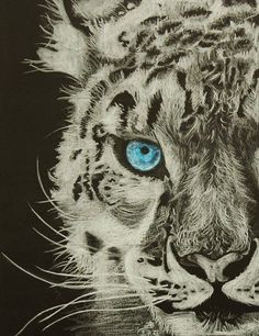 oil pastel, markers, pencils thanks for the help with the eye and tajing photo to Anbeads levhart snezny (panthera uncia) neboli irbis :-) My Drawings, Deviantart, Animals, Artists, Drawings, Art, Animales, Animaux, Animais