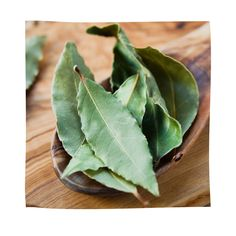 This Leaf Fights Diabetes, High Blood Pressure, Removes Fat and Cures Insomnia Natural Blood Pressure, High Blood Pressure, Bay Leaf Tea, Camomille Romaine, Lack Of Energy, Healing Oils, Laurus Nobilis, Tea Recipes, Italian Recipes
