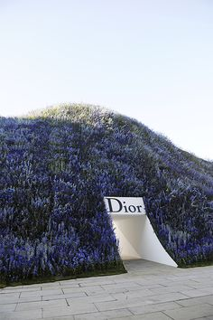 The beauty of Dior. #runway