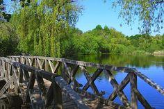 My Land, Halle, Garden Bridge, Marvel, Outdoor Structures, River, Beautiful, Hungary, Hall
