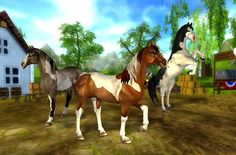 Beautiful new paint horses that come with awesome animations----star stable online video game----