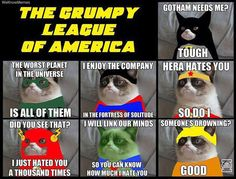 The Grumpy Cat Justice League