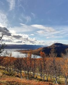 Autumn in Lapland 🍁 Picture by Lapland Finland, Camping, Arctic, Mountains, Nature, Pictures, Travel, Autumn, Outdoor Camping