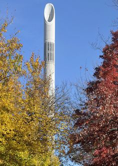 Belk Tower during fall at #UNCC 11-7-14