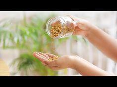LITTLE DIY - YouTube Aloe For Hair, Skin Gel, Thicker Hair, Hair Thickening, Hair Serum, Natural Hair Growth, How To Make Hair, Hair Oil, Grow Hair
