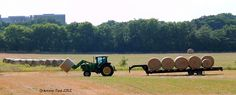 Making Hay While the Sun Shines by grannysue    http://365project.org/grannysue/365/2012-05-23