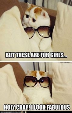 """""""You Rock That Androgynous Style, Kitteh!"""""""