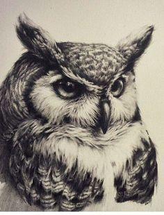 Owl tattoo, realistic, black and white