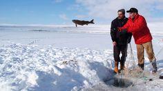 Çıldır-Gölü-Kars