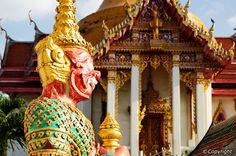 10 Best Attractions in Pattaya Beach - Best Places to See in Pattaya Beach Stuff To Do, Things To Do, Party Places, Pattaya, Places To See, Attraction, Fair Grounds, Beach, Honeymoons