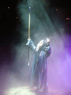 Merlin-Wizard (13)