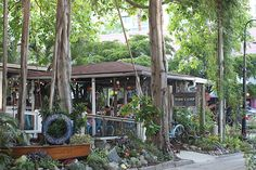 One of my favorite restaurants in Sarasota: Owen's Fish Camp!