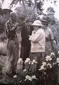 After 60 years, the fine vintage irises bred by Cedric Morris in his Suffolk garden at Benton End will once more grace the Chelsea Flower Show Gladiolus Bulbs, Gardening For Dummies, Chelsea Garden, Garden Online, Garden Bulbs, Morris, Garden Show, Rare Flowers, Chelsea Flower Show