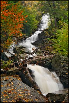 Lye Brook Falls ~ Manchester, Vermont Hurricane Irene rerouted the river above and the waterfall is now dry :(