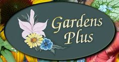 """""""DOWN THE GARDEN PATH"""" RADIO SHOW… My guest Dawn Golloher owner of GardensPlus, tells all about the behind the scenes in early spring at hernursery. She also discusses details on some of the new 2016 Easy Care Perennials she will have availablethis year. Listen in to learn about the new varieties and colours of cone-flowers, ...Read more About """"Dawn Golloher, Owner of GardensPlus"""""""