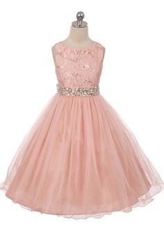 Blush Beautiful Lace Bodice with Tulle Girl Dress