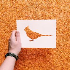 Nikolai Tolstyh • Paper Cut Animal Silhouettes • Bird
