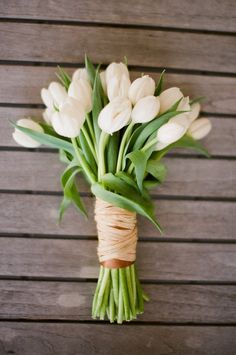A bunch of white tulips ~ love it for wedding bouquets! Photography by meredithperdue.com, Bouquet by negardens.com