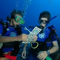 Information About Marine Biology.