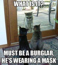 It's all fun & games until something bad happens. Home protection can protect you in case of a robbery. Give M&M a call today! #MartinAndMartin #NoblesvilleInsurance #SeriouslyGoodInsurance