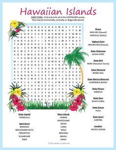 Aloha setzen Hawaii Tropical Safari Kinder Geburtstag Beach Party Dekor Banner