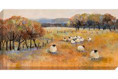 Sheep Gathering - Oswaldtwistle Mills