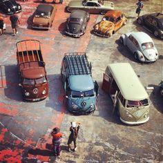 Vw's T3 Vw, Volkswagen Jetta, Volkswagen Bus, Vw Camper, Vw Caravan, Combi Split, Combi Vw, Wheels On The Bus, Automobile
