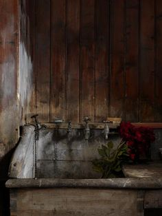 sugarinteriora:    Simon Brown, Flower Sink, Tullanally, 2009.