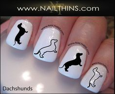 Dachshund Nail Decal Weiner Dog Nail Art Nail Designs NAILTHINS You will receive a total of 20 of each) of the pictured Dachshund graphic art Dog Nail Art, Animal Nail Art, Dog Nails, Cute Nails, Pretty Nails, Paw Print Nails, Nail Art Designs, Nail Decals, Nail Wraps