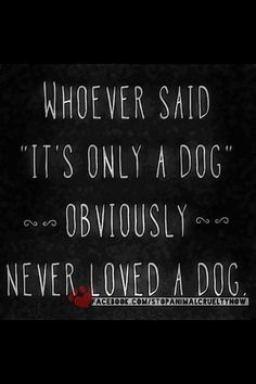 "Whoever said ""it's only a dog"" OBVIOUSLY never loved a dog <3 find #love and #dog lovers with us at You Must Love Dogs Dating!"