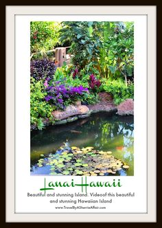 Join us on our adventure to Lanai Hawaii.  The secret island that is just amazing!  You can also read all about it in my blog at https://travelbyasherrieaffair.com/en_US/lanai-shhhh-its-our-secret/