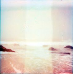 sea by rachel johnston