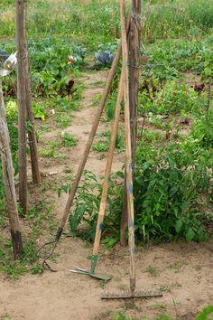 Saisongarten mit Kindern - das sind unsere Gartengeräte Tips And Tricks, Kids