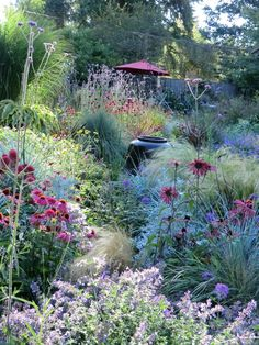 Perennial garden grasses, prairie style Would look great on a slope or hill #Hillsidegardening #gardendesign