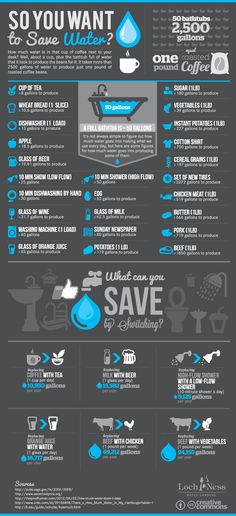 How Can You Reduce Your Water Footprint? This infographic shows ways to save water as well as provides information on how water it takes to produce some common foods. Interesting!